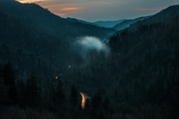 Many dead hemlock trees can be seen from an overlook at Great Smoky Mountains National Park on its Tennessee side.