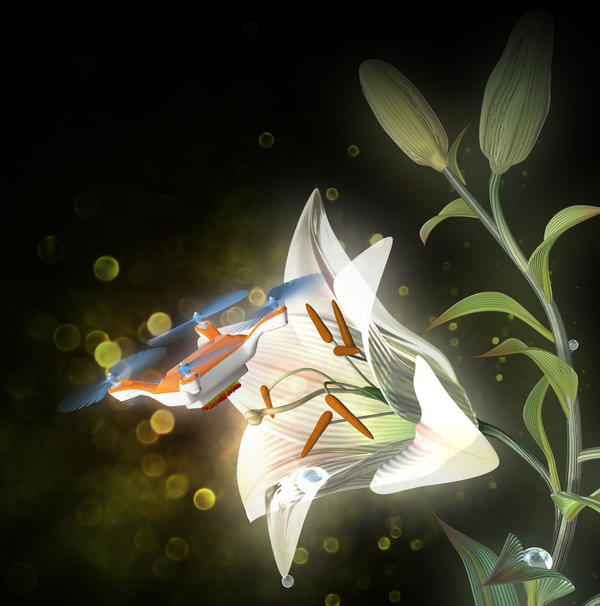 An artist's illustration shows how a remote-controlled drone might one day be used to pollinate flowers.