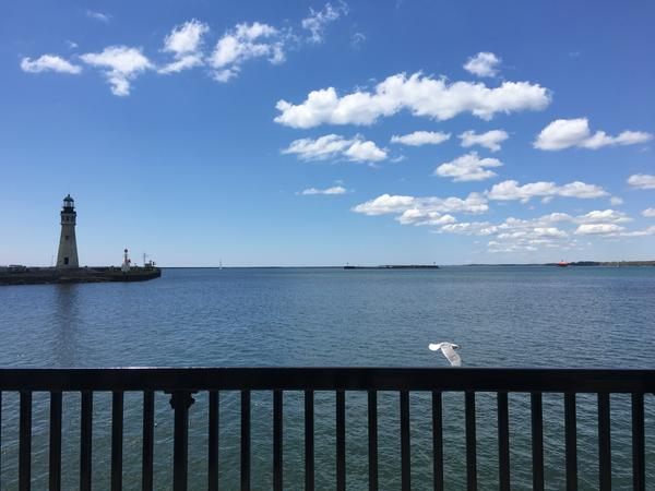 Buffalo's view of Lake Erie [Elizabeth Miller/ideastream]