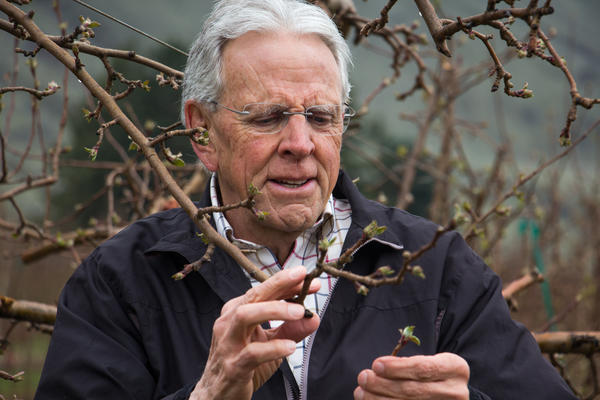 Bruce Barritt, retired apple breeder