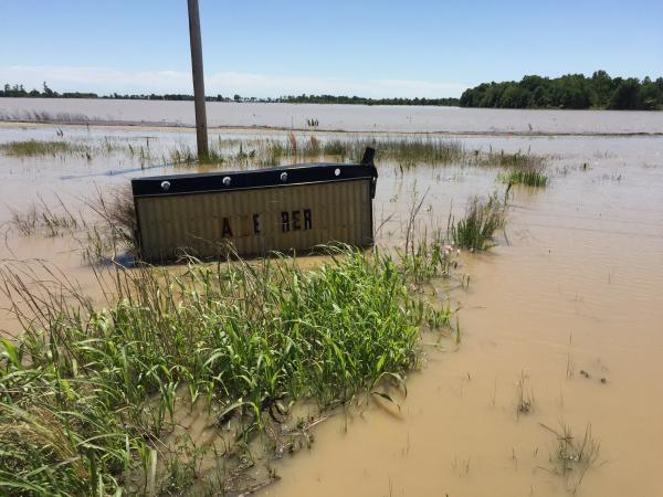 This is a submurged sign along Route 63 near Walnut Ridge in Lawrence County.  Lawrence County is among the 4 counties under a Flash Flood Watch due to the flooding of the Black River in Pocahontas.