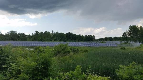 Kevin Sullivan put solar panels on a portion of his 60 acres of property in Suffield, Connecticut.