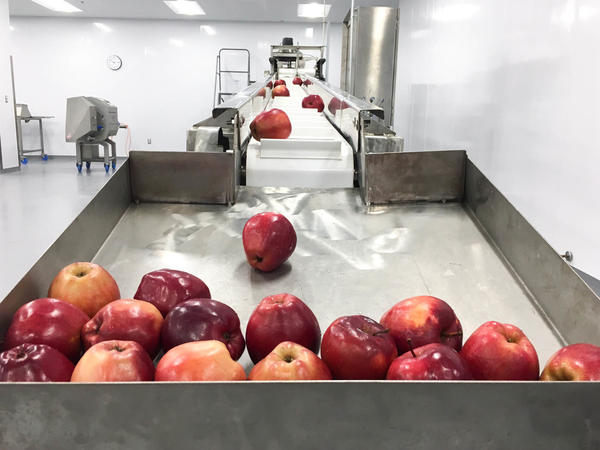 Washed apples collect in a bin, ready to be sliced in Foodlink's processing center. The sliced apples are sold to local public schools to be served to their students for lunch. The program supports local apple farmers and provides fresh fruit to children.
