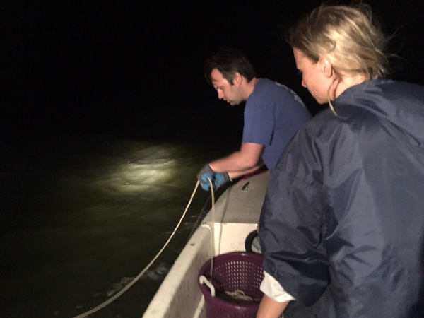 Charles Bangley of the Smithsonian Environmental Research Center and a member of his research team night fishing for juvenile bull sharks on the Pamlico Sound.