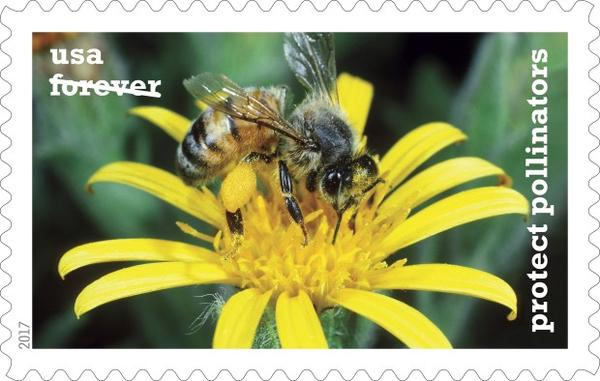 <p>Wildlife photographer Goerge Lepp captured this image of a honeybee on a ragwort folower using a film camera more than 15 years ago. ©2017 USPS</p>