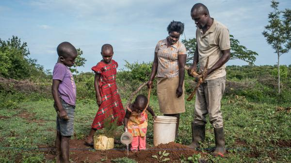 Denis Otieno is one of the villagers getting $22 each month from the charity GiveDirectly. He and his wife have used some of the money to buy cypress saplings. They hope to sell the trees for lumber in a few years to pay for their children's education.