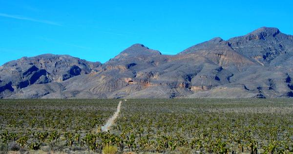 Yucca Mountain in Nevada, long considered by some to be a good site for nuclear waste storage, looms in  the distance.