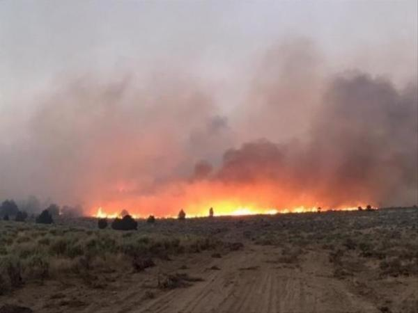 <p>The Cinder Butte Fire on Aug. 5, 2017.</p>