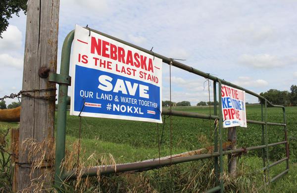 Anti-pipeline signs greet visitors to Art Tanderup's farm near Neligh, Nebraska.