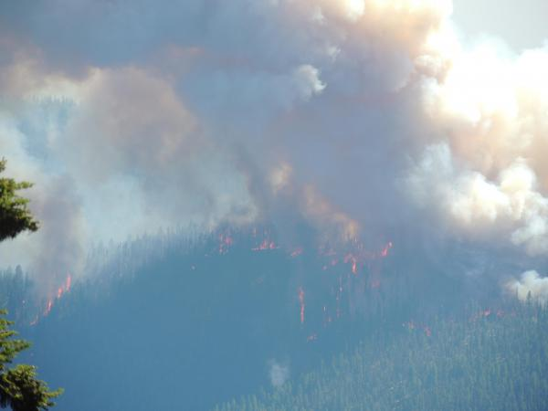 Rice Ridge Fire