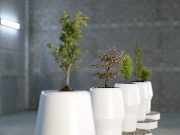 The Bios Urn mixes cremains with soil and seedlings. It automatically waters and cares for the memorial sapling, sending updates to a smartphone app.