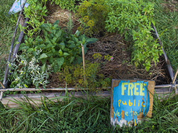 Some community gardens keep plots open to the public instead of assigning them to individuals.