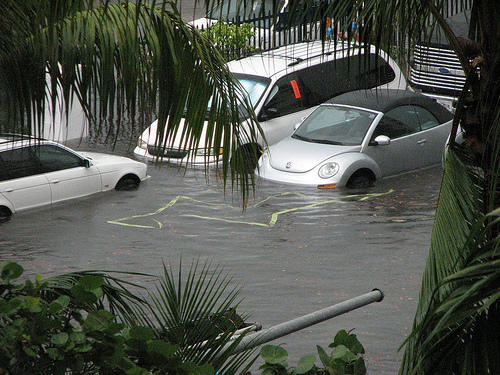 "Congressman Carlos Curbelo said in a statement that South Florida is already seeing flooding and it ""is only going to get worse."""