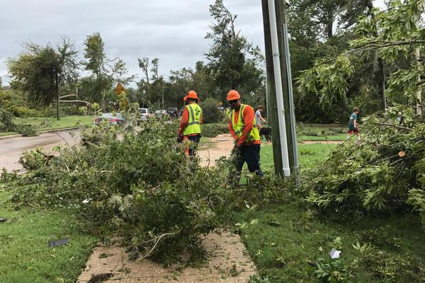 Crews are clearing debris and removing downed trees and broken branches from public areas and lawns throughout the neighborhood.