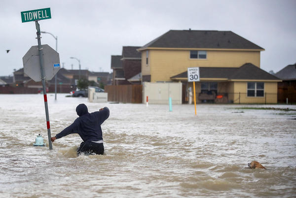 A person and a dog make their way through a flooded street in Houston after the area was inundated with flooding from Harvey, which has been downgraded from a hurricane to a tropical storm.