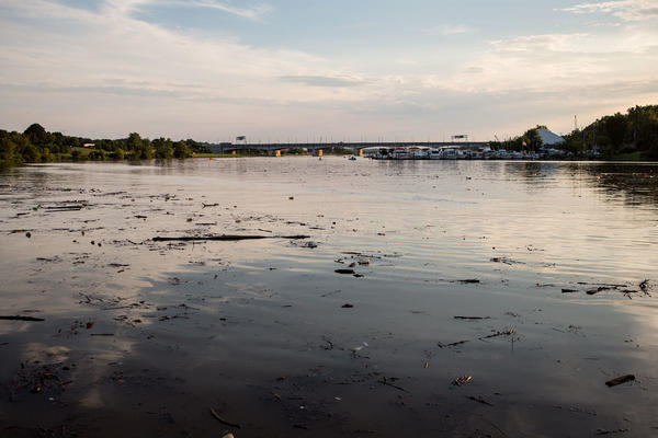 A quiet view of Anacostia River on a Monday evening after a heavy rain, which stirred up debris in the river. The Seafarers clubhouse and the Pennsylvania Avenue bridge appear in the distance.