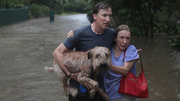 Andrew White helps a neighbor — and a dog — get to safety after their street was flooded by Hurricane Harvey.