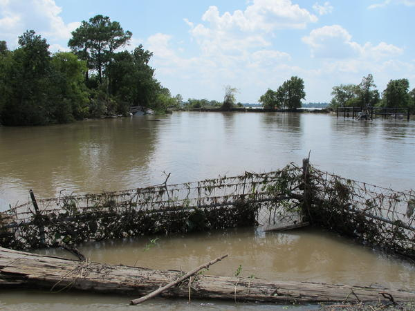 The Highlands Acid Pit Superfund site remained flooded on August 31. The water has since receded, and some residents are concerned that toxins from the site could have spread into the nearby neighborhood.