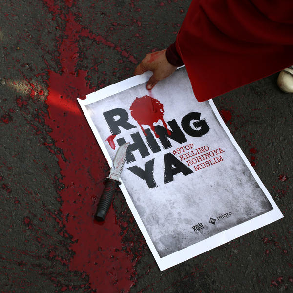 "At a rally Sunday in Indonesia, demonstrators gathered to show solidarity with Rohingya Muslims in western Myanmar, splattering fake blood to protest the country's ""clearance operations"" against the ethnic minority."