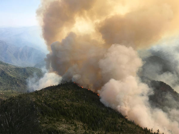 File photo of the Chetco Bar fire in southern Oregon on July 29, 2017. Wildfires have burned more than 500,000 acres in Oregon so far this year.