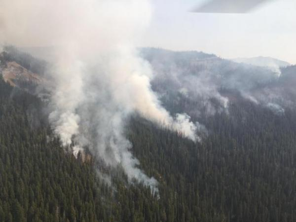 Strawberry Fire on the Spotted Bear Ranger District.