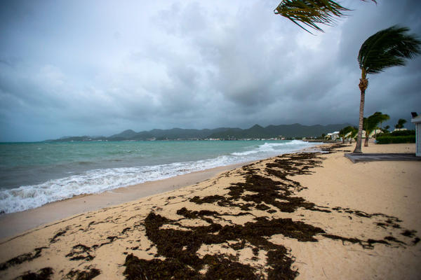 Winds blow in Marigot, St. Martin, ahead of the arrival of Hurricane Irma.