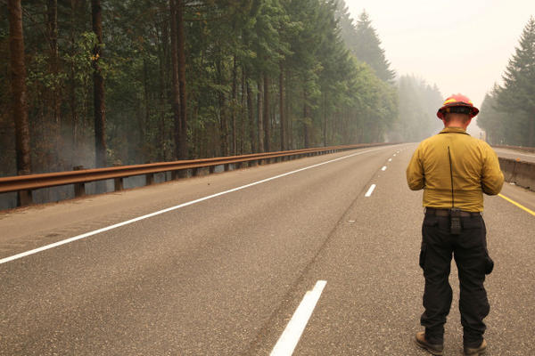 <p>A firefighter stands on I-84, which has been closed because of the Eagle Creek Fire.</p>
