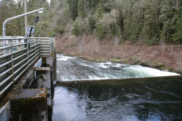 <p>The Portland Water Bureau is considering two water treatment options after the EPA ruled the city must take steps to prevent further outbreaks of cryptosporidium in its Bull Run water supply: an ultraviolet water treatment center and a traditional water filtration center. </p>