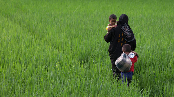 A Rohingya mother carries one child and leads another through the fields of Whaikhyang, Bangladesh, on Sunday.