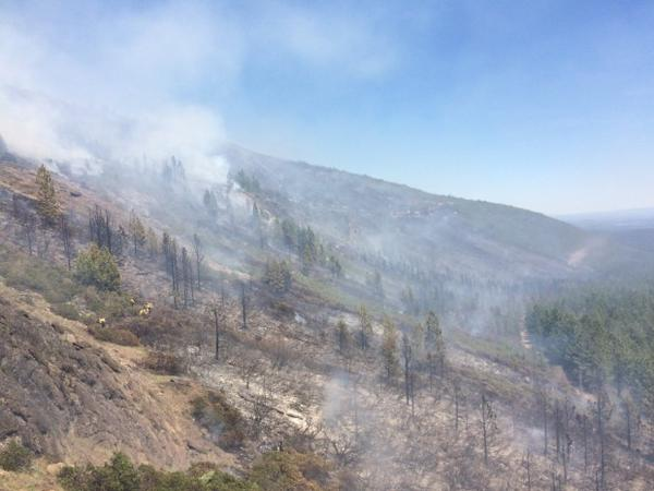 <p>Smoke rises from a fire on Cougar Butte in southern Oregon. Fire managers declared a start to wildfire season in Oregon in early June 2017.</p>
