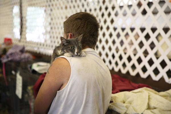 <p>People have brought their pets to the Red Cross shelter in Stevenson, Washington. Most evacuees are from Cascade Locks.</p>