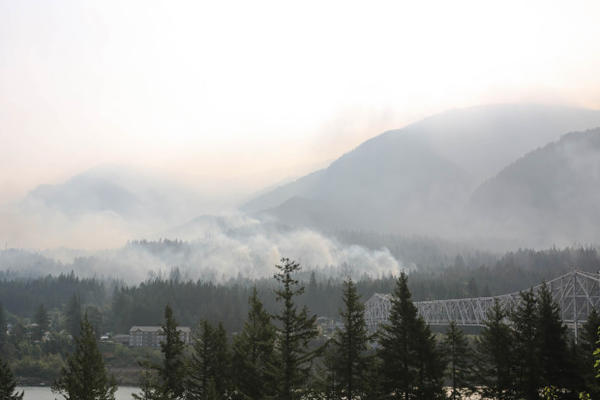 <p>The Eagle Creek Fire as seen across the Columbia River in Stevenson, Washington, Sept. 8, 2017.</p>