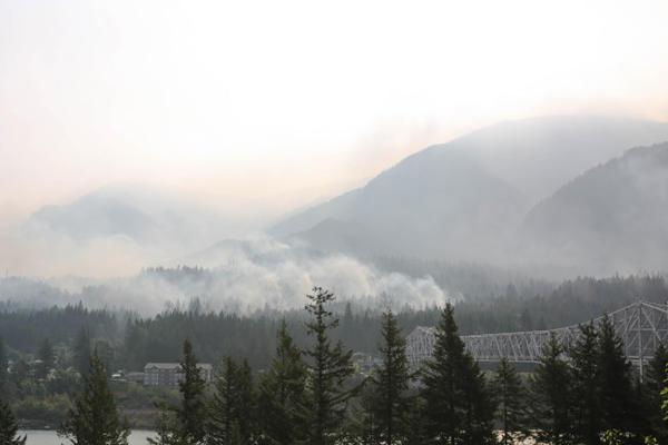 <p>The Eagle Creek Fire as seen across the Columbia River in Stevenson, Washington, Sept. 8, 2017.</p>