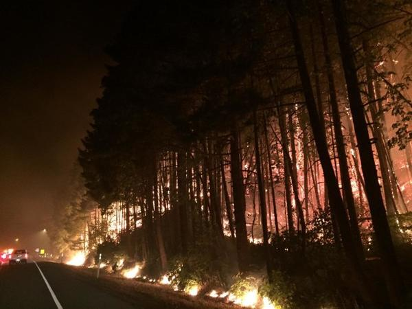 <p>Fire crews battling the Eagle Creek Fire perform a back burn of fuel near Interstate 84 West on Sept. 8, 2017.</p>