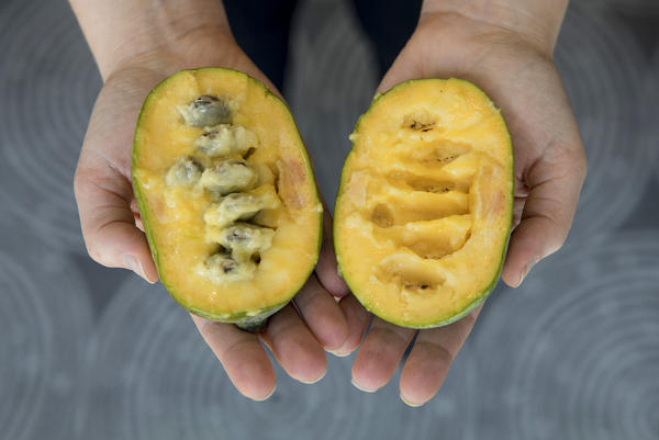 The inside of a pawpaw is soft and gooey.