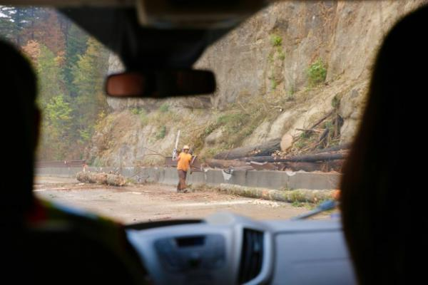 <p>Crews work to remove trees damaged by the Eagle Creek Fire along I-84 on Sept. 14, 2017.</p>