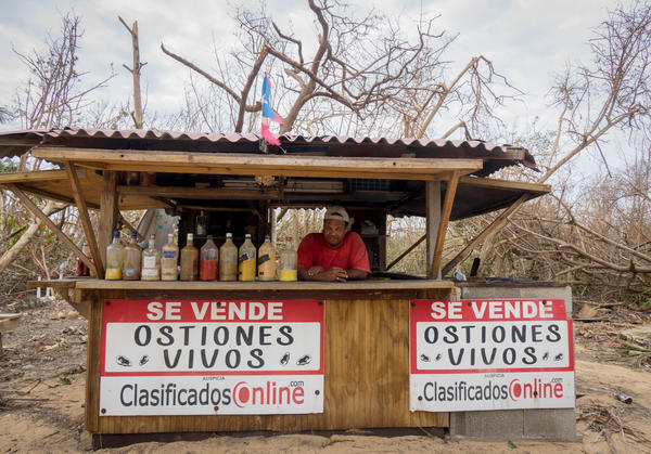 Edwin Delgado Rivera stands behind the counter of his oyster shack in Loiza, Puerto Rico, which sustained heavy damage by the destructive path of Hurricane Maria.