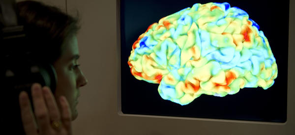 """A visitor to the Wellcome Collection's 2012 exhibition """"<a href=""""http://www.wellcomecollection.org/whats-on/exhibitions/brains.aspx"""">Brains: The mind as matter</a>"""" looks at a functional magnetic resonance image (fMRI) showing a human brain as it listens to Stravinsky's """"Rite of Spring"""" and Kant's third Critique."""