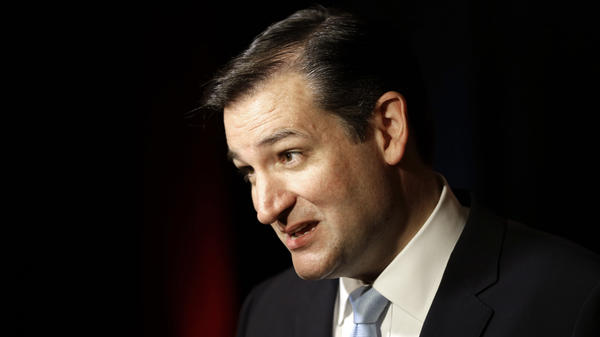 Sen.-elect Ted Cruz of Texas answers a question from a television reporter on Nov. 6 in Houston.
