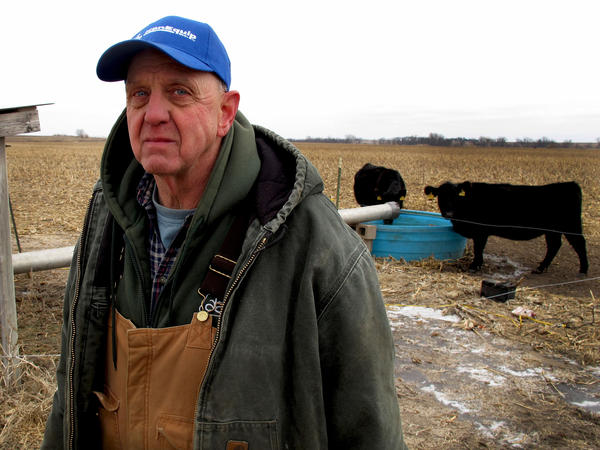 With irrigation severely restricted due to drought, Kansas farmer Mark Taddiken is worried about significant losses from reduced crop yields.