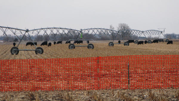 Nebraska, dotted with pastures and farmland, is at the heart of a legal battle that could help decide the fate of the Keystone XL pipeline. The state's Supreme Court is considering a legal challenge to the project's proposed route.