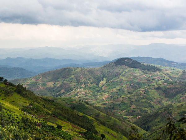 "Rwanda is known as ""le pays des milles collines"" €-- the land of a thousand hills. Weather varies by altitude; for farmers, detailed forecasts can make a huge difference."