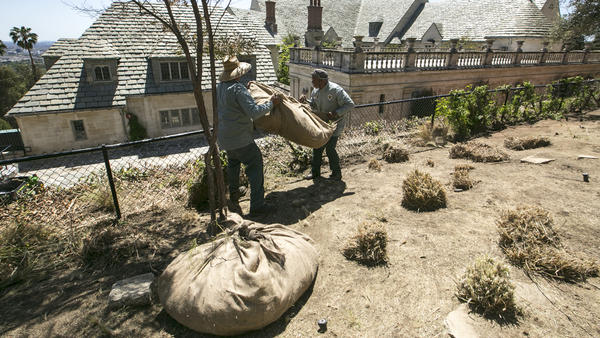 When California Gov. Jerry Brown mandated water cutbacks in 2015, many people responded by having the grass taken out of their lawns and replacing it with more drought-friendly landscaping.