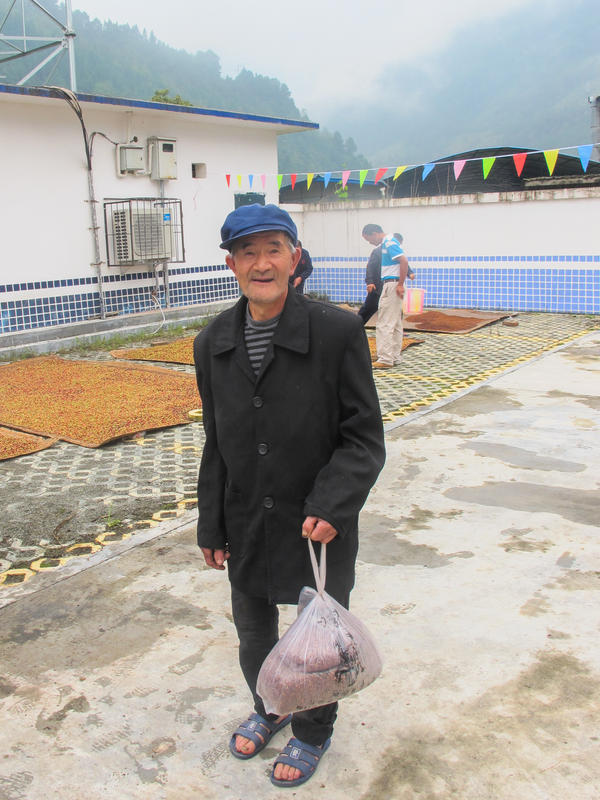 A villager brings in a bag of freshly picked schisandra berries to the cooperative sun-drying area.