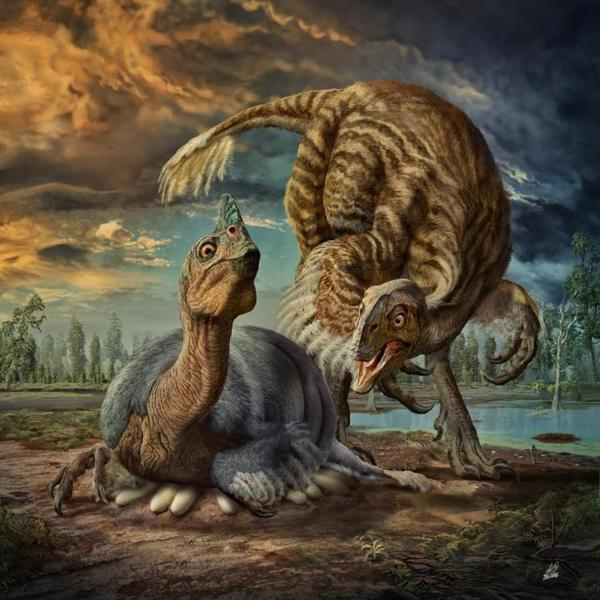 In an artist's rendering, a gigantic, cassowarylike dinosaur named <em>Beibeilong, </em>which lived some 90 million years ago, incubates its eggs.