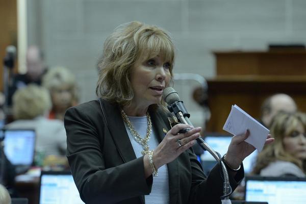 Rep. Diane Franklin, a Republican from Camdenton