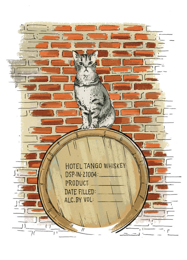 "Fletcher Pickles stepped into his role as the Hotel Tango Artisan Distillery mascot, with nearly as many Instagram followers as the actual Indianapolis distillery. Owner Travis Barnes says, ""I suspect he sees himself as the Brad Pitt of cats."""