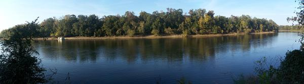 A panorama view of Apalachicola River from Florida's Torreya State Park.