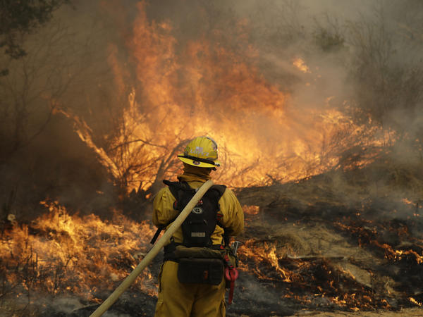 Fresno firefighter Peter Lopez holds a water hose as he monitors a backburn while fighting a wildfire in Glen Ellen, Calif.