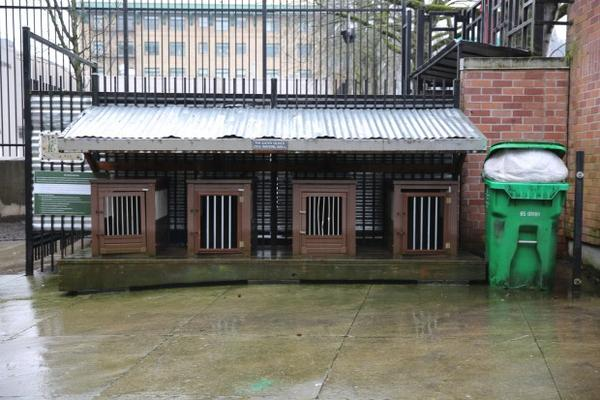 <p>Dog kennels in the courtyard of Outside In, a homeless services nonprofit, in downtown Portland.</p>